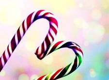 New candy cane flavors …