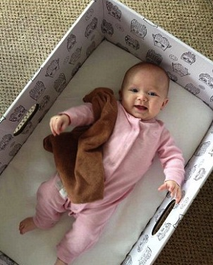 Forget the Pricey Bassinet, …