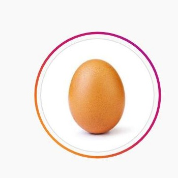 How 'Eugene' the Instagram Egg Plans To Do …