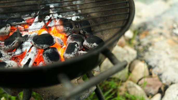 Ideas for a Better BBQ: New …