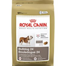 Royal Canin Bulldog 24